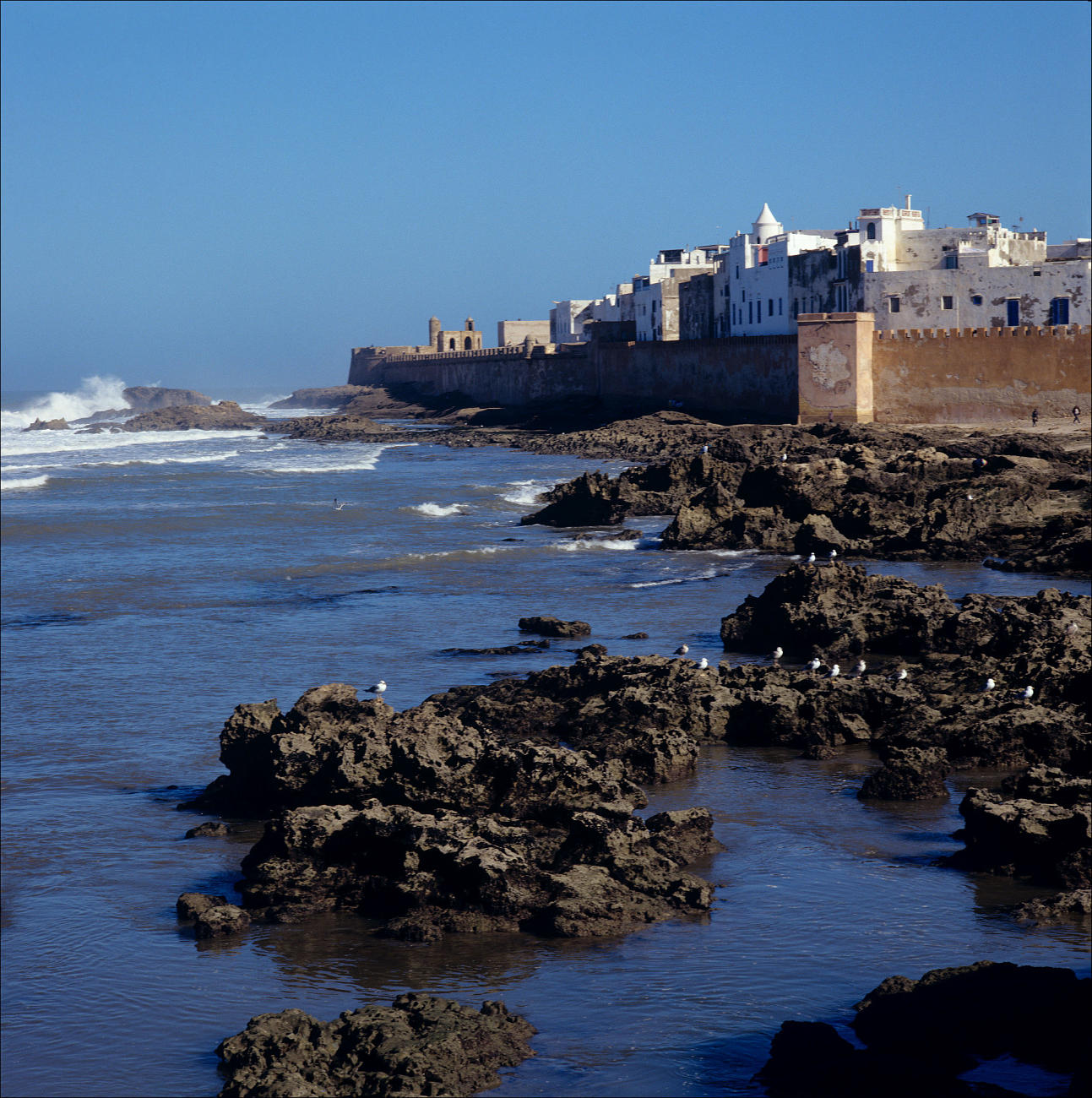 Photo du port et des brisants d'essaouira
